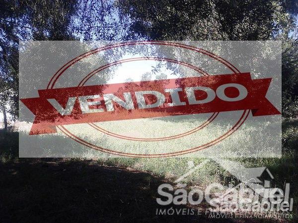Vila Trindade